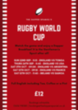 RUGBY WORLD CUP (1).png