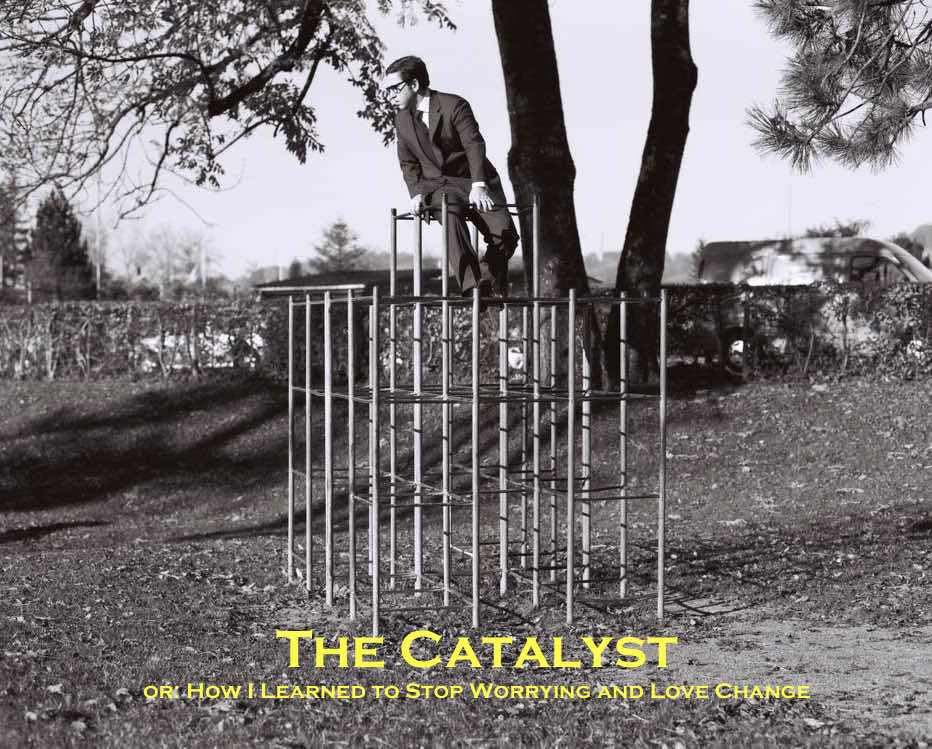 The Catalyst - MARGARIS ADVISORY 2014