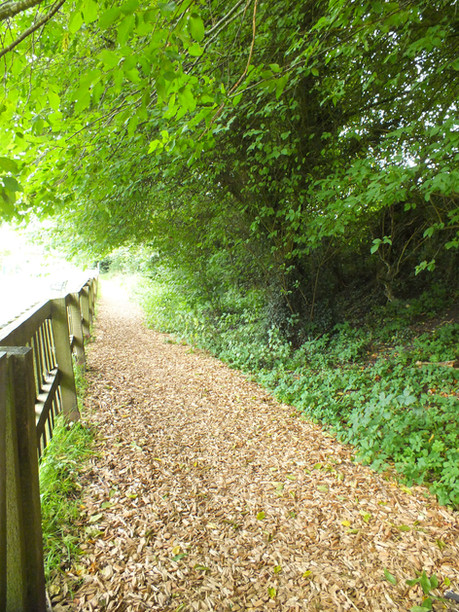 wood chipped path