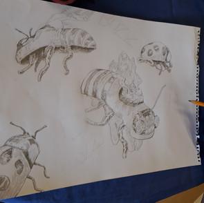 Beetles and Bees: Big Draw 2019