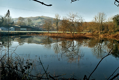 view of the pond 2000.png
