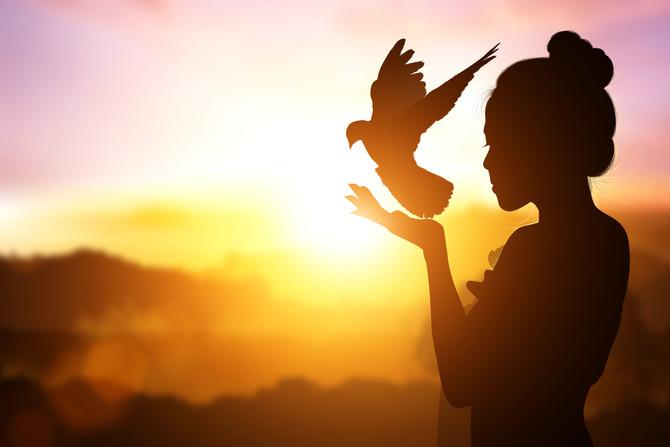 La voie de la liberté des dépendants affectifs