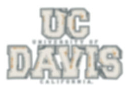 uc-davis-applique-2.jpg