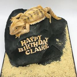 reptile bearded dragon Birthday Cake, Leeds, Yorkshire, HD Cakes