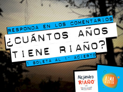 Riaño - Redes.JPG