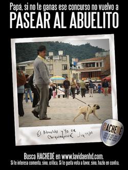 hachede-afiche-arnulfo-5alo.png