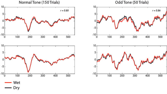 Comparison between wet and dry EEG/ERP recordings