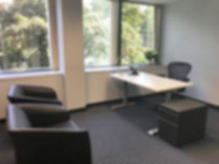 Office Suites of Darien - 3 Window Offic