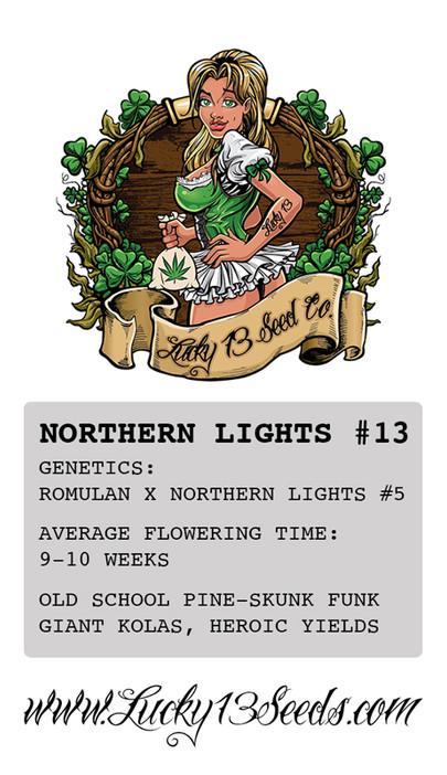Northern Lights Card Back.jpg
