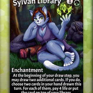 sylvn library copy.jpg