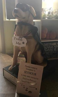 Seymour at Adams Street Espress 10-2017
