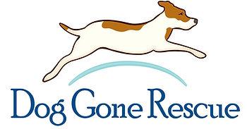 DGR Logo Tnspnt Bkgnd.jpg