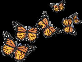 Monarchs Butterflies.png