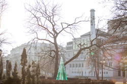 Layered Glass Fir Tree by the Opera