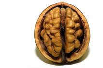 walnut-3072652_1920.jpg