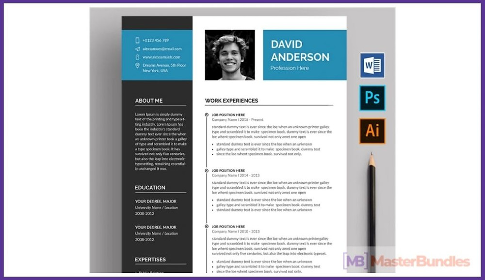50 Best Chronological Resume Templates In 2020 Free And Premium
