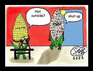 Funny pictures cartoon corn kernels one popped and one not