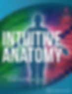 intuitive-anatomy-small.jpg