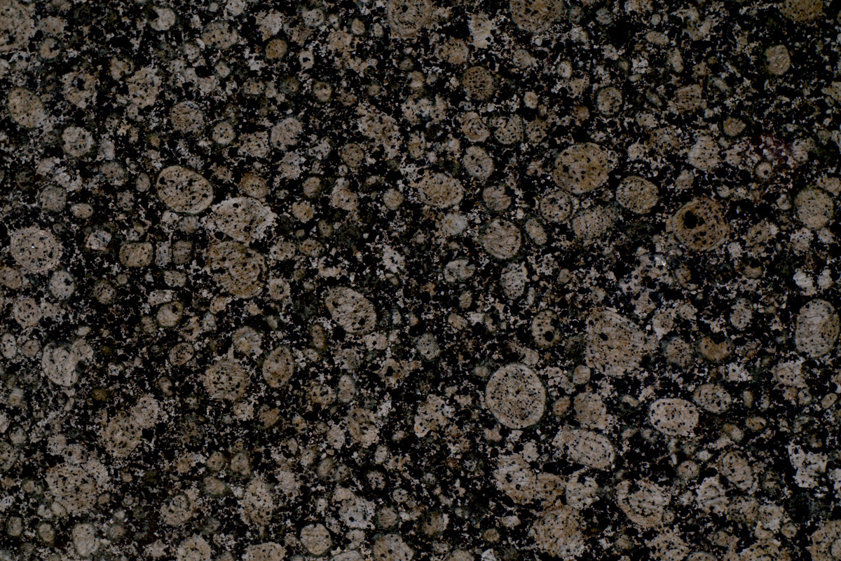 baltic brown dark