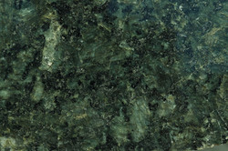 buttefly green