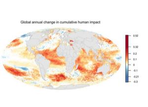 Mapa mundi da mudança dos impactos humanos cumulativos no oceano de 2003 a 2013. Há uma escala numérica representada por cores no mapa, que varia de cores frias a cores quentes. Quanto mais quente as cores representadas nas localidades, maior a mudança dos impactos humanos cumulativos. Essas cores são maiores nos oceanos Atlântico Equatorial, Índico e Pacífico Subequatorial.