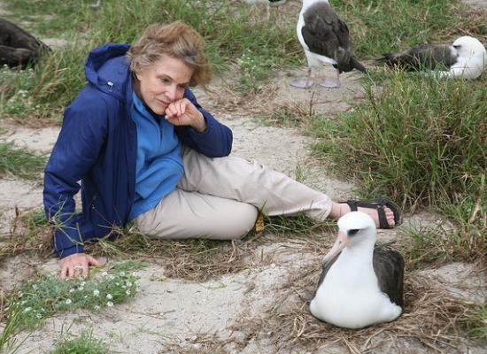 Fotografia de Sylvia Earle sentada sobre a areia, com pequenas plantas ao redor. Ela apoia a cabeça na mão esquerda enquanto observa um albatroz em seu ninho, no chão.