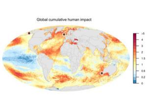 Mapa mundi dos impactos humanos cumulativos no oceano. Há uma escala numérica representada por cores no mapa, que varia de cores frias a cores quentes. Quanto mais quente as cores representadas nas localidades, maior a mudança dos impactos humanos cumulativos. Essas cores são maiores no Oceano Atlântico, regiões tropicais do Oceano Pacífico e cores mais frias são maiores no Oceano Pacífico Tropical.