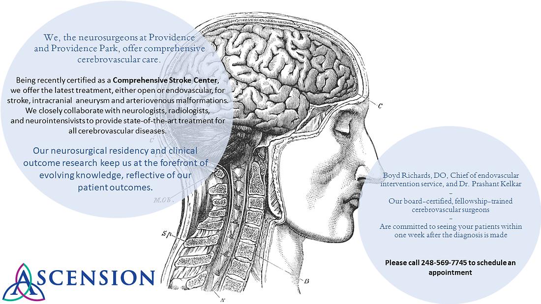 Cerebrovascular Final image.png