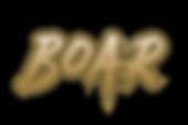 BOAR logo.png