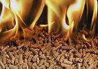 Análisis de biomasa