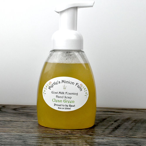 Clean Green Liquid Hand Soap (Foaming Pump)