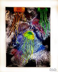 jellyfish4-2.jpg