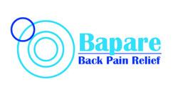 Bapare final Logo 2