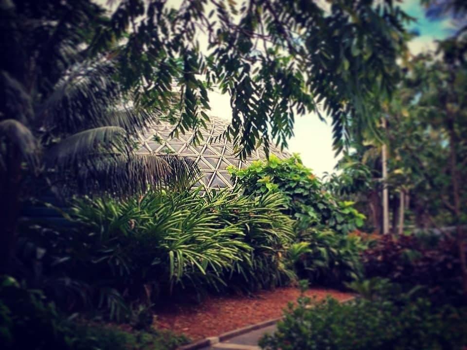Garden glas house