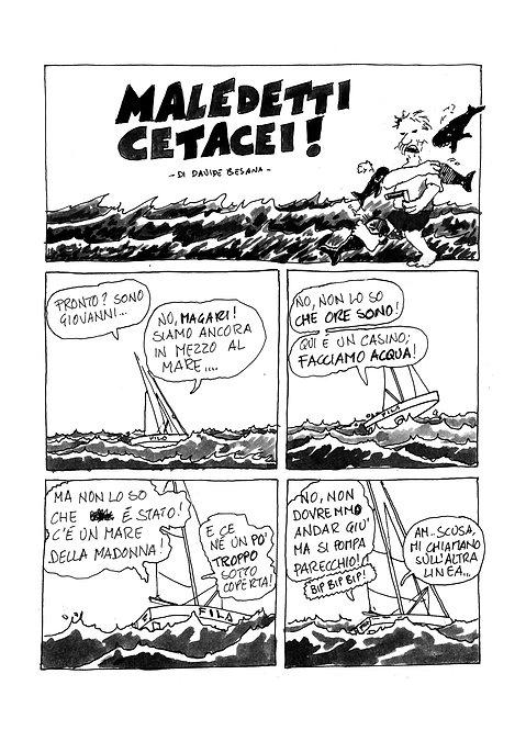 maledetti cetacei - 2 tavole