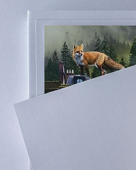 fox on roof packaking.jpg