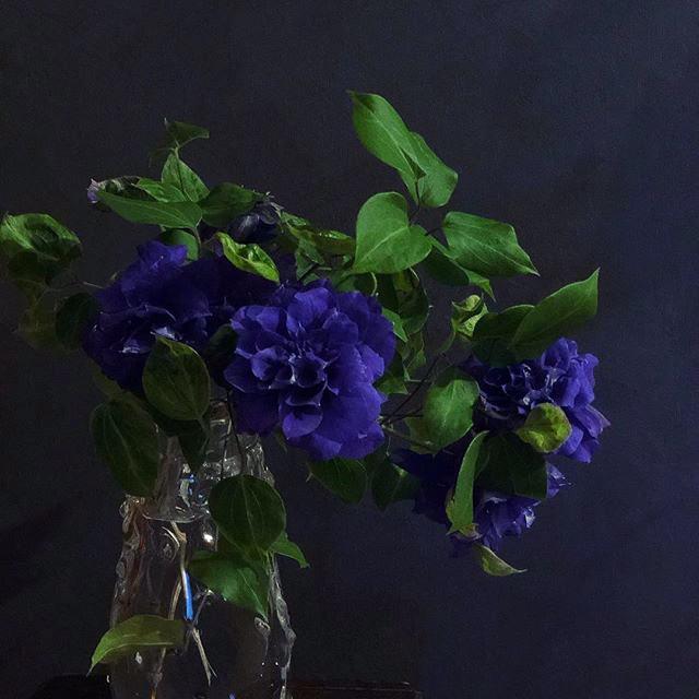 たわわな青 warafu