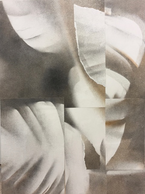 shade of soft