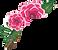Flowers%2520-%2520no%2520background_edit