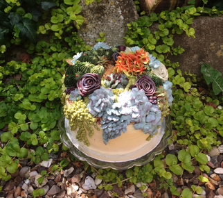 Large 8 Inch Succulent Cake