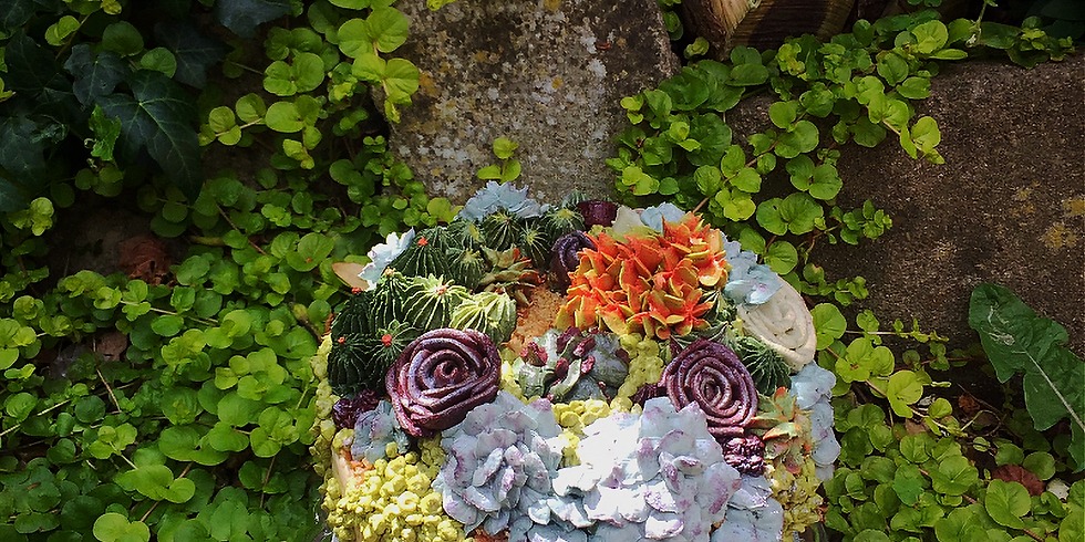Supreme Succulents - Full Day Cake Covering Class
