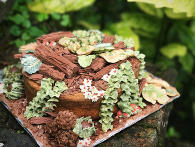 10 Inch 'Forest Floor' Cake