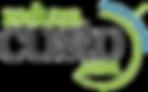 logo_reduzacusto_transparent.png