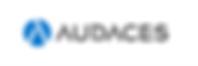 Logo Audaces.png