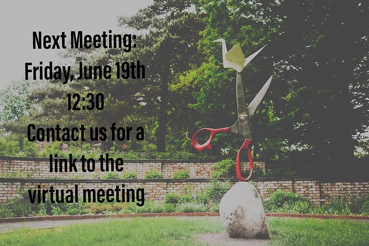 MNAP June Meeting.JPEG