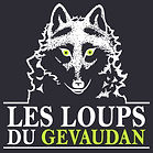 logo-grd.jpg