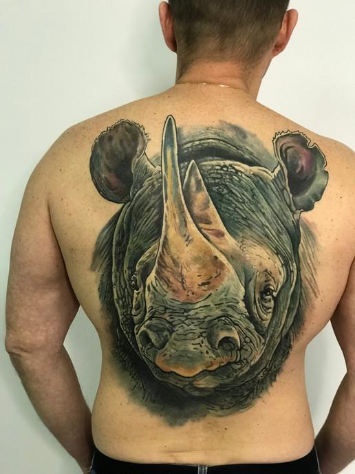Тату носорога во всю спину с мелкими деталями.