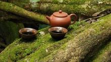 Autumn Tea/Thé pour l'automne