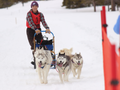 Dogsled-Girl.png