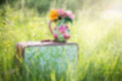 summer-countryside-grass-outdoor-35799.j